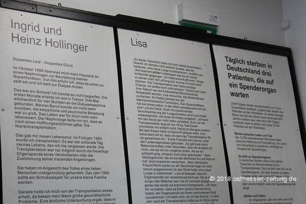 """Ausstellung """"Echte Körper – Von den Toten lernen"""" lockt nach Eichenzell"""
